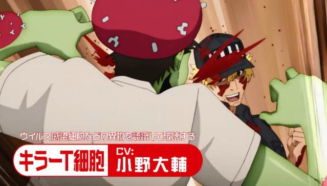 TV动画「工作细胞」第2季公开最新角色PV