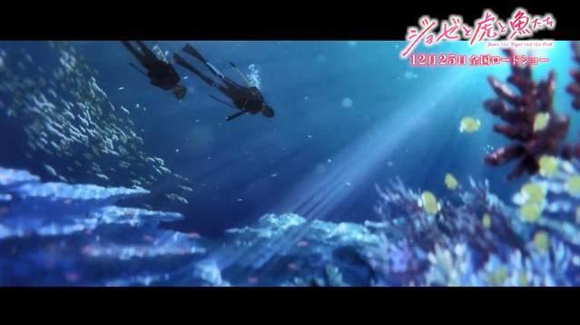 剧场版「Jose与虎与鱼们」开篇影像公开